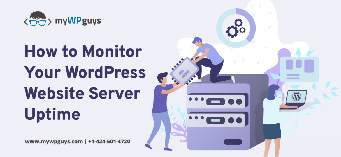 How to Monitor Your WordPress Website Server Uptime